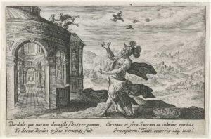Atena transforma Perdiz em uma ave